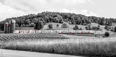 Swiss train ©rediimage By @tamimkarmous www.rediimage.ch #picoftheday #switzerland #trip #summer #green #albes #tamimkarmous #bluesky #happy #instagood #people #train #model #landscape #rediimage #red #photographer #photoshoot #photography #pic #hot #travel #traveling #Swiss #model #modeling #portrait #tamim #image # karmous #portrait #b&w Switzerland Trip, My Images, Modeling, Traveling, Photoshoot, Train, Black And White, Landscape, Portrait