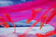 Andrea Juan, New Eden, 2012. Courtesy the artist SEE MORE AT: WWW.PLATFORMGREEN.ORG