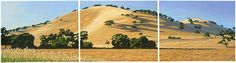 Mound, Sonoma County, #California: Three panels join to form this panoramic view  #Landscape