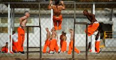 Prosecutors charged three San Francisco deputies on Tuesday for staging gladiator fights among inmates and making them beat themselves bloody under criminal threats, NBC Bay Area is . Gladiator Fights, Data Show, The Daily Caller, Federal Prison, Jim Crow, Department Of Justice, Attorney General, Staging, Obama