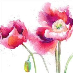 Poppies (Greeting Card)