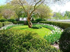 Gardens of Colonial Williamsburg