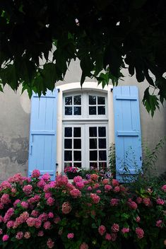 Love this European blue.  Board and Batten. www.timberlane.com if shutters are in your future.