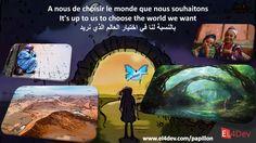 http://www.el4dev.com/papillon/