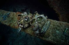 23 Amazing Things Divers Have Discovered At the Bottom Of The Ocean - BlazePress