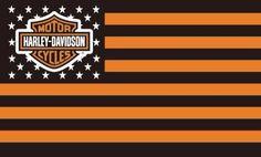 Harley Davidson Bike Pics is where you will find the best bike pics of Harley Davidson bikes from around the world. Harley Davidson Flags, Harley Davidson Pictures, Motor Harley Davidson Cycles, Classic Harley Davidson, Harley Davidson Chopper, Harley Davidson News, Harley Davidson Motorcycles, Bagger Motorcycle, Motorcycle Garage