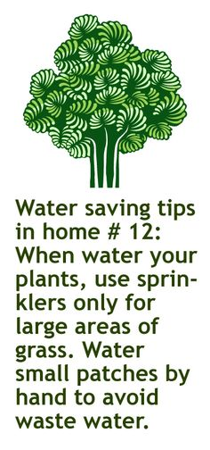 February 9th. 2013 Green idea #40: When water your plants, use sprinklers only for large areas of grass. Water small patches by hand to avoid waste water.