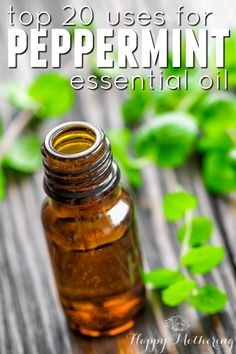 Are you building your essential oil stash? Peppermint essential oil is one you want to add - it has so many wonderful uses. We're sharing 20 of our faves.