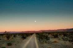I never thought I would enjoy desert scenery but after living in it for a brief stint, Ive definitely come to appreciate it more:) Photo Desert, Desert Road, Desert Sunset, Mojave Desert, Secrets Of The Universe, Fallout New Vegas, Road Trip, Adventure Is Out There, Photos