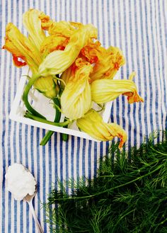 Zucchini flowers and dill