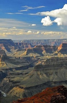 Grand Canyon. Pictures will never do it justice