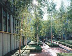 Rue de Meaux Housing, Paris. 1988-91. Arch: Renzo Piano. Land Arch: Michel Desvigne