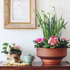 """Make a pretty spring bowl decoration with me today - it's #urbanjunglebloggers time over on the blog - Link in profile  Happy Tuesday! "" Photo taken by @lobsterandswan on Instagram, pinned via the InstaPin iOS App! http://www.instapinapp.com (03/31/2015)"