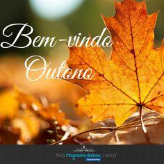 Bem-vindo outono!  O Outono é a estação de clima agradável e acolhedor. É um bom momento para preparar a casa para receber a estação mais encantadora do ano. Além das mudanças internas, é o momento de cuidados especiais no jardim.