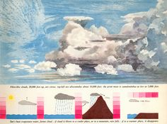 Edward Tufte and followers discuss simple visual communication in children's books