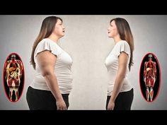 Dimagrire Camminando - Perdere Peso a Casa - YouTube
