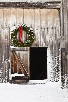 Christmas at the barn