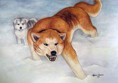 Riki and gin Anime Wolf, Dog Drawings, Wolves Art, Fox Dog, Drawing Stuff, Akita, All Dogs, Anime Stuff, Labrador Retriever