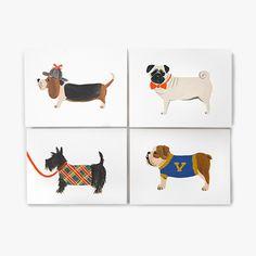 Dog - Assorted Card Set for Dogs   Humans   BarkShop $16