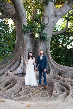couple standing on old unique tree trunk roots