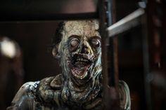The Walking Dead Autographed Walker Print  Stephen Vining