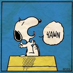 Good Night from Snoopy and I. Sleep well where ever you are. Peanuts Cartoon, Peanuts Snoopy, Peanuts Comics, Snoopy Comics, Snoopy Love, Snoopy And Woodstock, Peanuts Characters, Cartoon Characters, Cartoon Pics