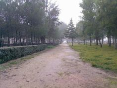 parque tierno galván de Don Benito