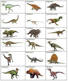 Quando i bambini adorano i dinosauri
