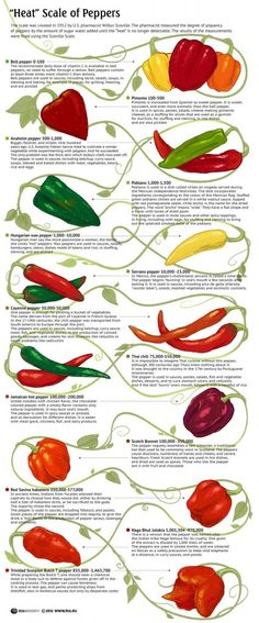 "Relative ""Hotness"" of Peppers"