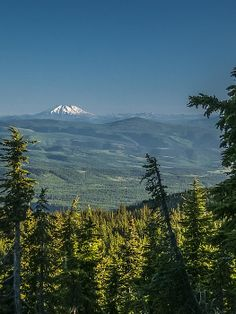 view from Lookout Mountain, the second highest mountain in Oregon's Mt Hood National Forest - in the background, Mt St Helens | Albert Seger, Fine Art America