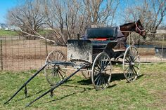 1000+ images about The Amish of Seymour series (Missouri) on Pinterest | Missouri, Amish and ...