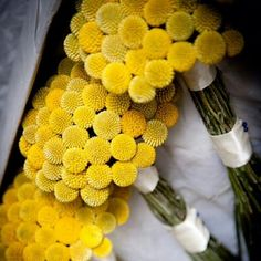 """Gelbe """"Trommelstöckchen"""", immer noch sehr beliebt für die Hochzeitsdeko"""