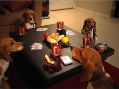 Hound dog poker.  LOL, where are the snacks?