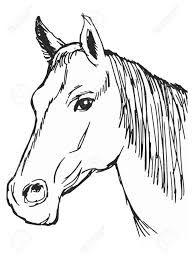 Resultado De Imagen Para Dibujo De Cabeza De Caballo Dibujos De