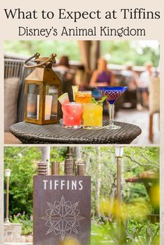 What to expect a the new Tiffins Restaurant at Disney World!