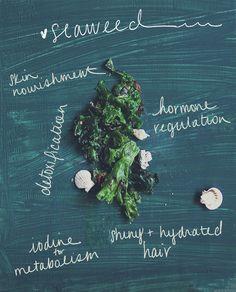 5 Reasons To Love Seaweed | Free People Blog #freepeople