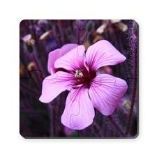 Flower Puzzle Coasters (set of 4)