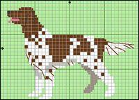 Münsterländer (kleiner) Red And White Setter, Black And White Dog, Cross Stitch Charts, Cross Stitch Patterns, Cross Stitching, Cross Stitch Embroidery, Sheepdog Tattoo, Puppy Day, Dog Crafts