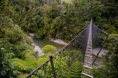 Swing Bridge New Zealand