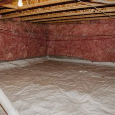 12 Best Crawl Space Mold Removal Images Mold Removal