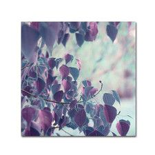 'Summer Thoughts' by Beata Czyzowska Young Photographic Print on Wrapped Canvas