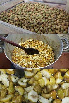 Pear compote: 100% fresh fruit. The taste of italian food. http://www.albergian.it/shop/composte-di-frutta-100/composta-di-pere-martin-100-frutta/