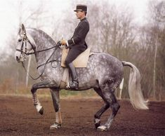 Look at the slack in the curb rein, the flatness of the back, the way his hindquarters are underneath him, how his poll is the highest point, and his head is only slightly above the vertical while his rider has his heels down and his leg in the proper place - underneath him, which draws a perfect line from heel to hip to shoulder.