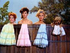 Linda Henning, Lori Saunders and Gunilla Hutton (Petticoat Junction) Petticoat Junction, Spy Shows, Old Tv Shows, Gunilla Hutton, Lori Saunders, The Beverly Hillbillies, Star Show, How To Make Shorts, Classic Tv