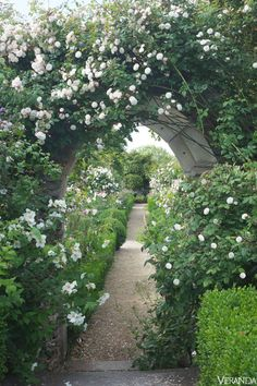 Outdoors, old-fashioned roses clamber up Gothic arches; peonies bloom blowsily and delphiniums stand triumphant. If plants want to self-seed, they are welcome to do so. As you walk past boxwood-edged borders along the wide gravel paths, sweet peas, tobacco plants, Sweet William, and lilies perfume the air. A salvaged antique archway frames a garden path. Rambling Rosa 'Félicité et Perpétue' and Philadelphus 'Beauclerk.'   - Veranda.com