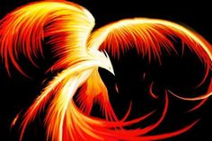 Fuel Your Inner Phoenix! Let the fire in you burn what no longer serves you so that you can rise up stronger and more purified than EVER!