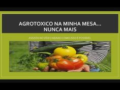 """""""Guia de Como Plantar orgânicos."""""""