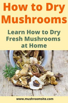 A complete guide to dehydrating mushrooms at home. Did you know that, if you dehydrate fresh mushrooms, they will last indefinitely? And you can dry them in your oven. This is great if you find fresh Edible Wild Mushrooms, How To Cook Mushrooms, Dried Mushrooms, Stuffed Mushrooms, Growing Mushrooms At Home, Mushroom Cultivation, Canned Food Storage, Dehydrated Food, Fungi