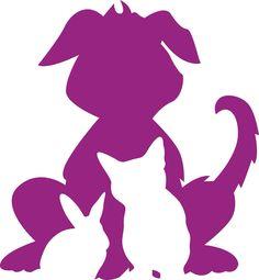 Paws dog walking and pet services, Edinburgh.  https://www.facebook.com/pawsdogwalkingedinburgh