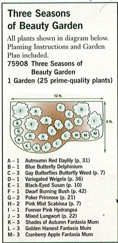 The Urban Domestic Diva: GARDENING: Garden plan a week, Week 2, Three Seasons of Beauty